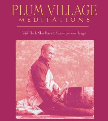 AW00347D Plum Village