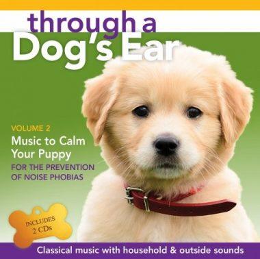 JL03972D Through A Dogs Ear