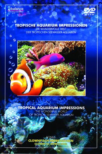 DVD529_Tropical_Aquarium_Impressions