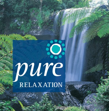 PCD818_pure_relaxation